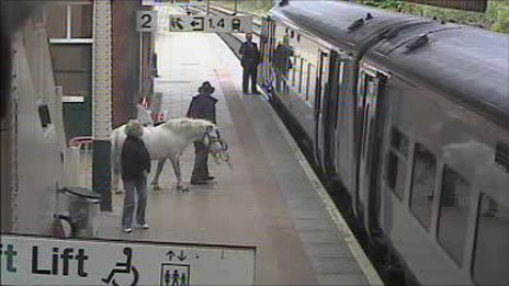 A man, a horse and a train at Wrexham