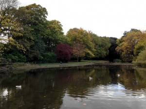 St Stephen's Green 1